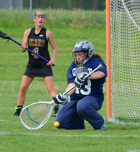CR South goalie Chloe Wszolek (43) goes low to make save.