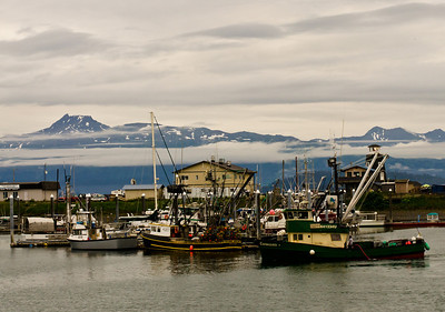"Homer is the self-proclaimed ""world capital of halibut fishing""."