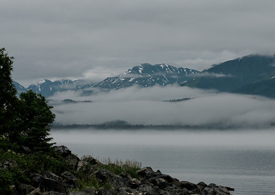 Foggy morning on Resurrection Bay.