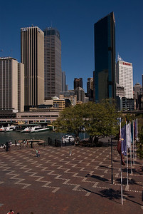 Best of Sydney 2007-3