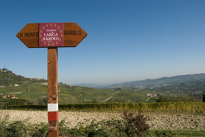 The road between La Morra and Barolo