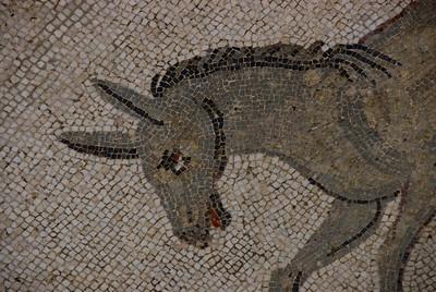 3rd Century mosaics of Villa del Casale