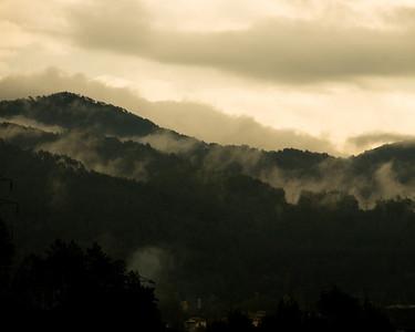 Volterra 2006-1