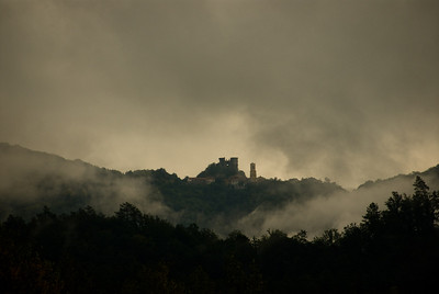 Volterra 2006-3