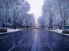 Madrid: Paseo del Prado in the Snow