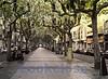 Walkway, Calle de la Madre de Dios, Logroño, Spain