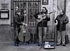 Afternoon Serenade, Barrio Viejo, Logroño, Spain