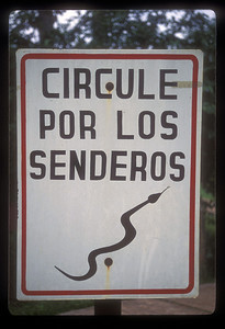 Careful! Iguazu Falls National Park, Argentina.