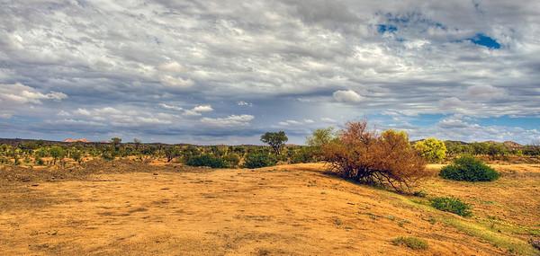 The outback, Australia.