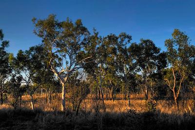 Northwest Territory, Australia.