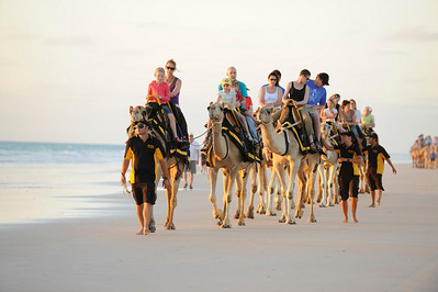 Camels on Cable Beach, Broome, Australia.