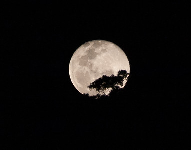 Full Moon Over New South Wales
