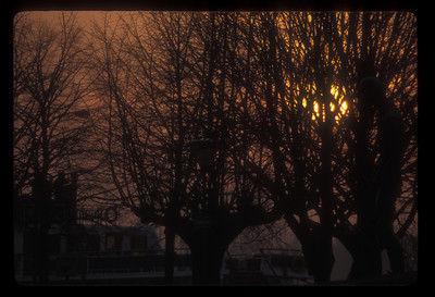 Winter twilight, Bruges, Belgium.