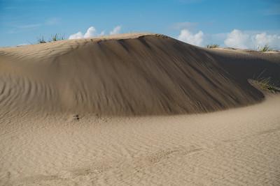 Dunes in Westende, Belgium