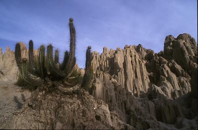 Devil's Canyon, Bolivia.