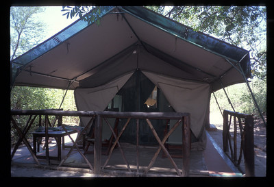Safari tent, Okavango delta region of Botswana.