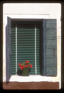 Flower pot in window sill, Sofia, Bulgaria.