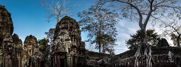 Siem Reap - Ta Prohm