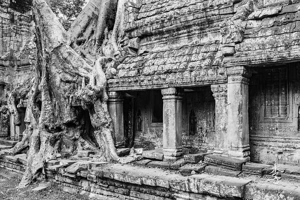 Siem Reap - Preah Kahn temple
