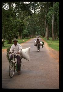Road near Angkor Wat, Cambodia.