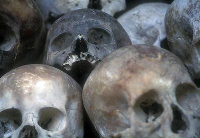 Skulls at Genocide Museum, Phnom Penh, Cambodia.