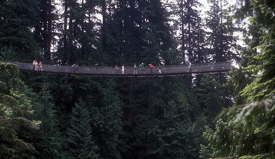 Capilano suspension bridge near Vancouver, Canada.