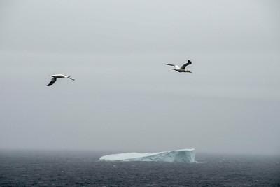 Iceberg between Newfoundland and Labrador, Canada.