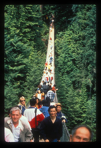 Capilano suspension bridge near Vancouver, Canada.