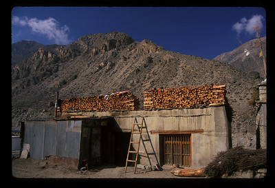 Storing firewood for winter, rural Tibet. Where do they find trees?