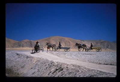 Local transport in Tinggri village, Tibet.