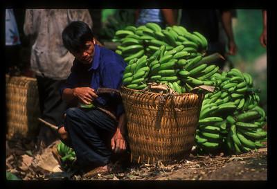 Bananas about to be loaded onto boats near Vietnam border, Yunnan province, China.