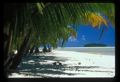 Beach on islet near Aitutaki, Cook Islands.
