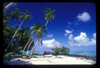 Motu near Aitutaki, Cook Islands.