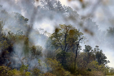 Forest fire, Costa Rica.
