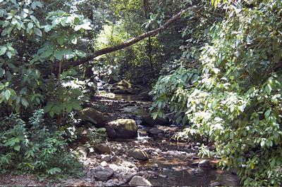Creek in rural northern Costa Rica.