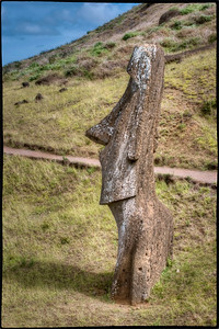 Single Moai at Rano Raraku Quarry, Easter Island (Rapa Nui).