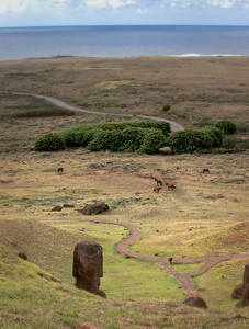 View to the sea, with wild horses, from the hillside at Ranu Raraku quarry, Easter Island (Rapa Nui).