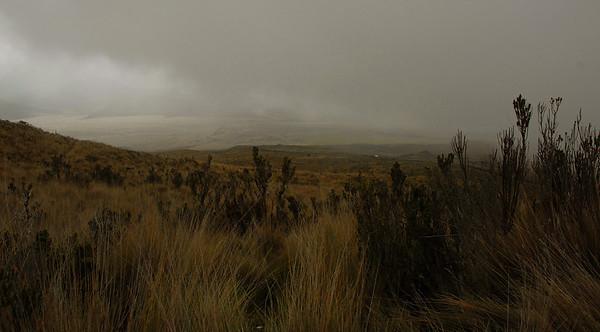 The road to Mt. Cotopaxi, Ecuador.