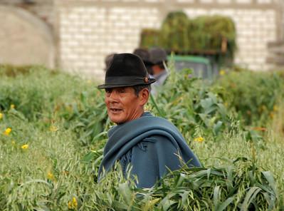 Man, Rural Ecuador