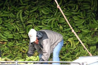 Banana Truck, Ecuador