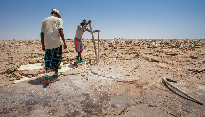 Salt extraction by the Afar people