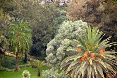 Addis Ababa, Ethiopia park.