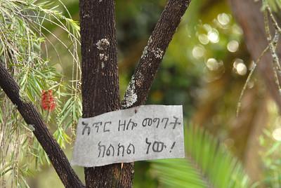 You know what I'm sayin'. Addis Ababa, Ethiopia.