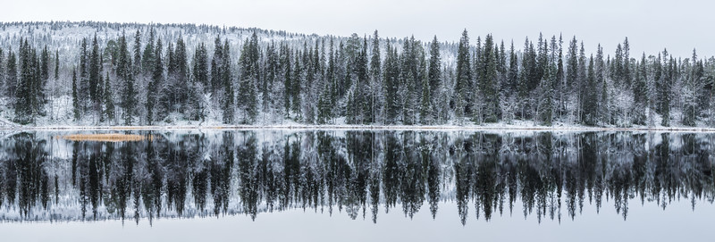 Reflections of a small lake in Luosto, Finland.