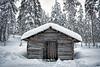 Log shed