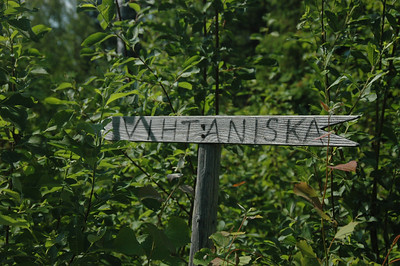 Vihtaniska, that way. Near Varkaus, Finland.