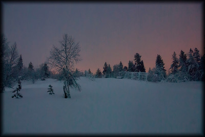 The cold north country in winter. Finnish Lapland.