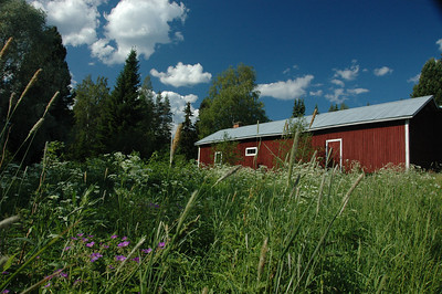 Farm near Varkaus, Finland.
