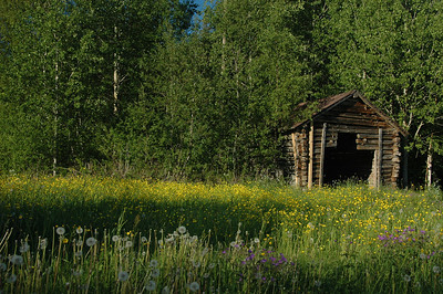 Shed on farm, rural Finland.