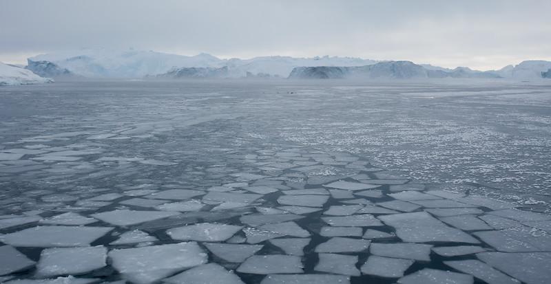 Frozen Floes